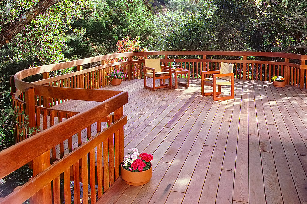 Redwood deck in forest.