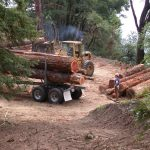 Logs and logging truck at landing.
