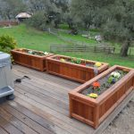 Free-standing redwood planter boxes.