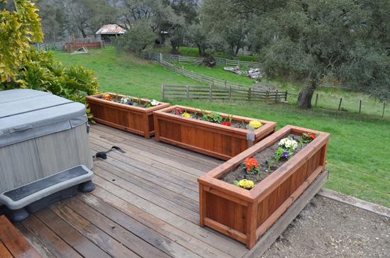 Swanton View Redwood Deck